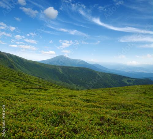 Foto auf Gartenposter Hugel Mountain landscape in summer