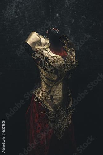 Photographie Golden armor for women