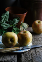 Apples Still Life. Rustic.