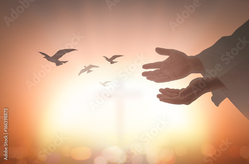 Valokuva  Ascension day concept: Silhouette human open two empty hands with palms up and birds flying over blurred cross in church background