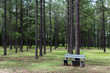 Florida Park