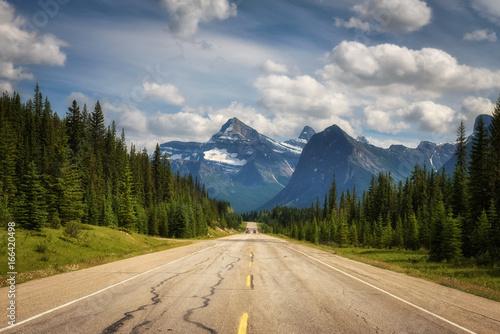Plakat Malownicze Icefields Pkwy podróżujące przez Parki Narodowe Banff i Jasper