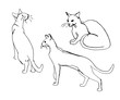 Vector set of cute cats. Doodle or sketch style image.