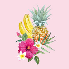 Watercolor Vector Pineapple Fruit