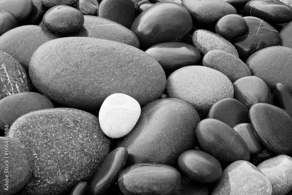 Fototapeta Black and White abstract smooth round wet pebbles sea texture background