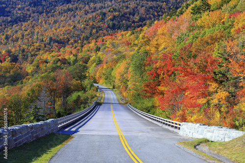 Fotografie, Obraz  Blue Ridge Parkway, Grandfather Mountain, North Carolina