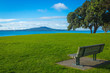 Milford Beach Auckland New Zealand; Green Field Area View to Rangitoto Island