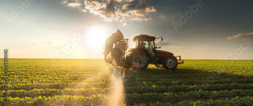 Foto auf Gartenposter Honig Tractor spraying soybean field at spring