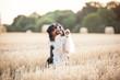 Hund Australian Shepherd hebt die Pfote hoch zum Winken