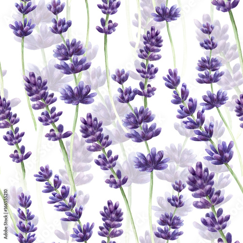 fototapeta na szkło Watercolor hand drawn lavender seamless pattern background