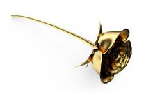 Gold Rose 3D Render On White B...