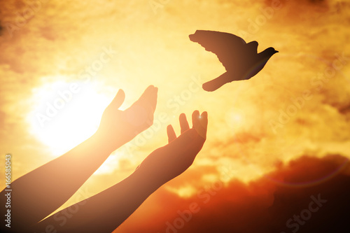 Staande foto Vogel Man praying and free bird enjoying nature on sunset, Worship christian or freedom concept. silhouette pigeon flying out of two hand and freedom concept and international day of peace.