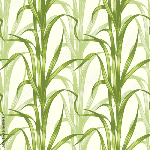 Foto auf AluDibond Ziehen Seamless pattern with medical plants