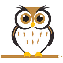 Owl Logo Design With Modern Co...