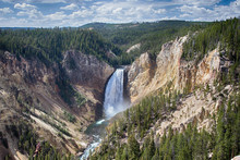 Lower Yellowstone Falls  And C...