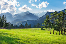 Meadow In Rocky Mountain Natio...