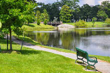 Park With Lake
