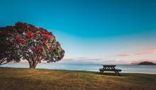 Sunrise In New Zealand Paihia ...