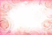 Abstract Romantic Rose Horizon...