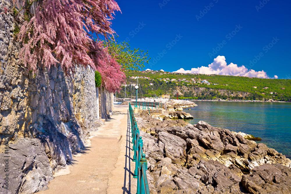 Fototapety, obrazy: Lungomare coast famous walkway in Opatija