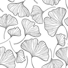 Vector Seamless Pattern With Outline Gingko Or Ginkgo Biloba Leaves In Black On The White Background. Floral Pattern With Gingko Foliage In Contour Style For Summer Design And Coloring Book.