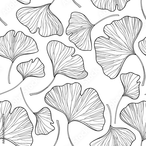 Fototapeta Vector seamless pattern with outline Gingko or Ginkgo biloba leaves in black on the white background. Floral pattern with Gingko foliage in contour style for summer design and coloring book. obraz na płótnie