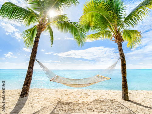 Foto  Urlaub am Palmenstrand mit Sonne und Hängematte