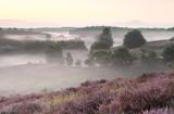 calm summer morning on pink hills - 166733415
