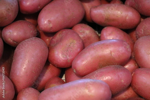 Red potatoes at the weekly market in Fremantle, Australia Canvas Print