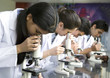 Students using microscopes in laboratory