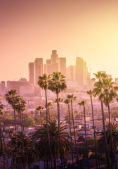 Fototapeta Beautiful sunset of Los Angeles downtown skyline and palm trees in foreground