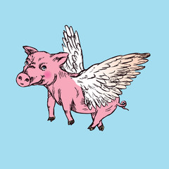 Funny piggy with lovely angel wings, hand drawn doodle, sketch in pop art style, color vector illustration