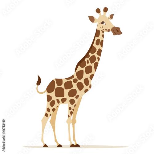 Photo  Vector cartoon style illustration of giraffe