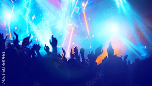 Zdjęcie XXL Wiwatujący tłum na koncercie