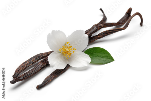 Fotomural  Vanilla sticks with jasmine