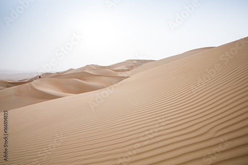Tuinposter Zandwoestijn Rub al Khali Desert at the Empty Quarter, in Abu Dhabi, UAE