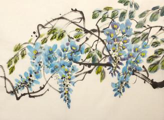 Fototapeta Egzotyczne Tender flowering wisteria