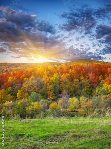 Deurstickers Oranje eclat mountain autumn landscape with colorful forest