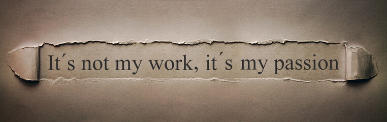 It´s not my work, it´s my p...
