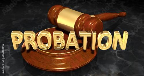 Probation Legal Gavel Concept 3D Illustration Canvas Print