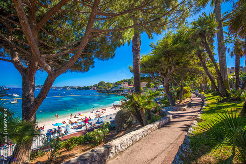 Canvas Prints Nice Beach promenade in the Beaulieu-sur-mer village with palm trees, pine trees and azure clear water