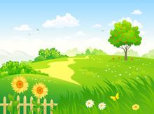 Summer Country Garden