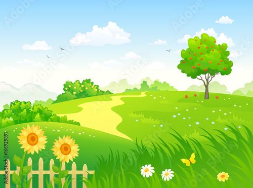 Fotografía Summer country garden