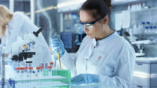 Fotografia  Female Research Scientist Uses Micropipette Filling Test Tubes in a Big Modern Laboratory