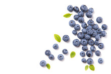 Fresh Blueberries And Leaves, ...