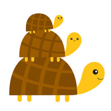 Three Turtle Tortoise Pyramid Cute Cartoon Character Family Set. Father, Mother, Baby. Pet Animal Collection. Education Cards For Kids. White Background. Isolated. Flat Design