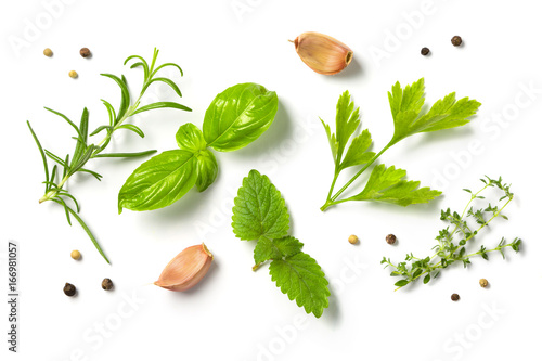Selectionof herbs and spices, isolated