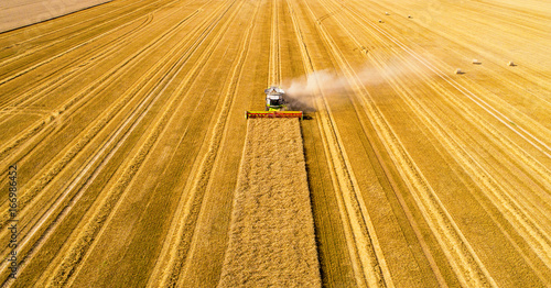 Leinwand Poster Mähdrescher bei der Ernte
