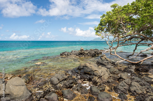 Foto op Plexiglas Caraïben Anse Figuier in Martinique, with Diamond Rock in the distance