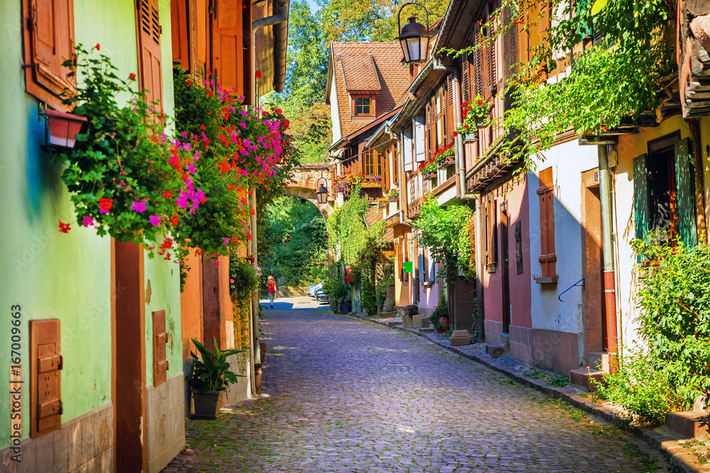 Fototapeta Floral traditional town Colmar with charming old streets in Alsace region. France